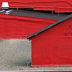 Red Roof Top by David Schroeder