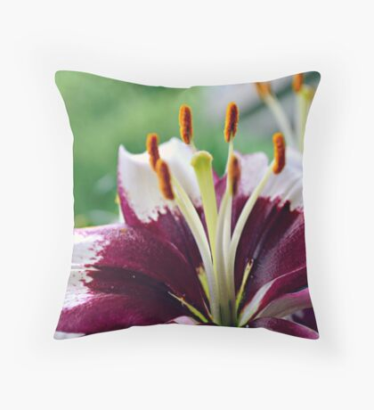 The beauty of the season Throw Pillow