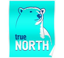True North polar bear Poster