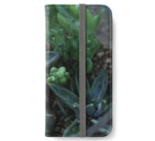 Jar of Succulents iPhone Wallet/Case/Skin