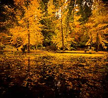 The Paradise in Autumn by Geeta Shyam