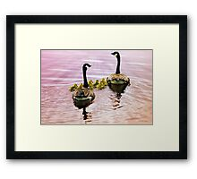 Going Home for the Night (Canada Geese) Framed Print