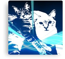 Electric Kittens Canvas Print