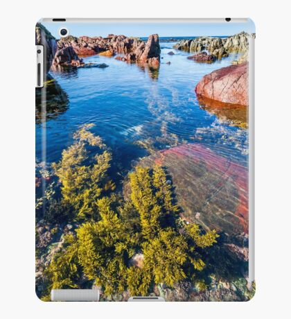 Red Rocks Water World iPad Case/Skin