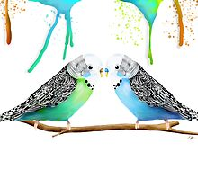 Budgie Love by © Karin Taylor