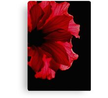 Sunbathing Hibiscus Flower Canvas Print