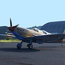 Spitfire Mk9 - MH367 by Roy  Massicks
