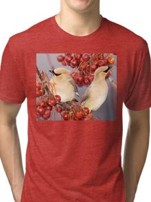 Feathers and Cherries Tri-blend T-Shirt