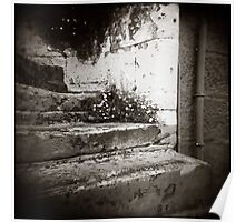 { Surry Hills Steps } Poster