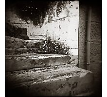 { Surry Hills Steps } Photographic Print