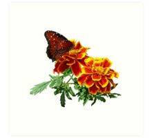 Queen Butterfly on Marigold Art Print