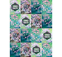 Purple Pink Hydrangea Geometric Patchwork Quilt  Photographic Print