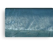 A Play of Texture & Movement Canvas Print