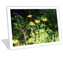 Yellow Wildflower Daisies In A Field Laptop Skin
