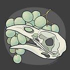 Crow & Grapes by Hannah Ward