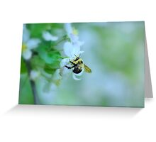 Bee & Blossom Greeting Card