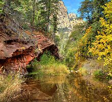 Oak Creek Canyon in Sedona by Diana Graves Photography