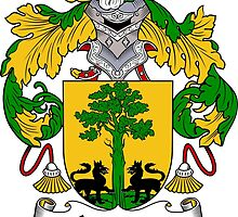 Aguirre Coat of Arms/Family Crest by William Martin
