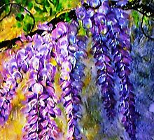 Wisteria 2 by Ciska