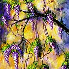 Wisteria 3 by Ciska