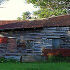 Dilapidated Montville Building by Jenelle  Irvine