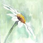 One little daisy by Maree  Clarkson