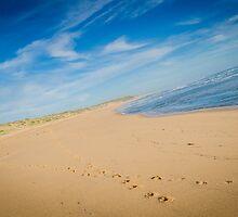 Kilcunda Beach II by Johann Vandendaallen