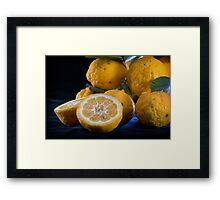When Life Hands You Lemons I Framed Print