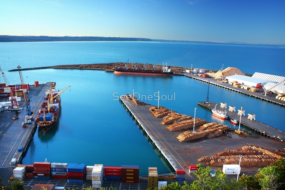 Napier Port, NZ by SeeOneSoul