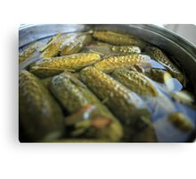 crispy salted cucumbers Canvas Print