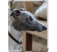 Baxter 3 iPad Case/Skin