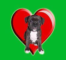 Staffy puppy by Matterotica