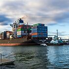 Container Ship by Bette Devine