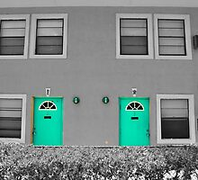 Doors of Turquois by Sean Brett