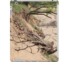 Our Life Often Ends With Erosion iPad Case/Skin