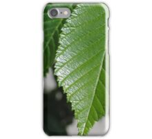 Leaves r cool iPhone Case/Skin
