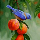 Bluebird and Peaches iPhone Case by csforest