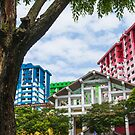 Colourful Singapore by Cvail73