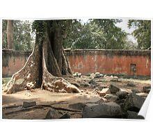 Ta Prohm, Tree #2 Poster