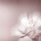 Pink whisp by shalisa