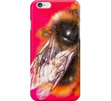 Bee on a pink flower iPhone Case/Skin
