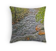 Flowing water Throw Pillow