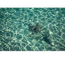 Dreaming of a Seaside Vacation - Crystal Clear Mediterranean Sunshine Photographic Print