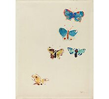 Odilon Redon - Five Butterflies 1912. Butterflies painting:  butterfly, fly,  butterfly, movement, flutter, fluttering, animal, colourful , little small, impression , nature Photographic Print