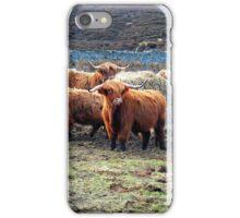 Wee Hieland Coo Beasties iPhone Case/Skin