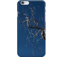 Silver and Blue - a Metal Tree Sculpture Plus Blue Sky and Sunshine iPhone Case/Skin