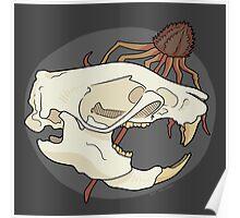 Rat Skull Poster