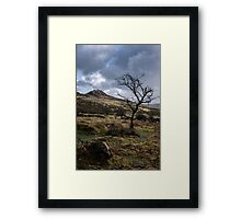 Tree & Tor Framed Print