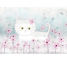 Cute Cat on a Flower Field Photographic Print