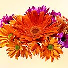Mixed Bouquet With Gerbera Daisy and Mums by Susan Savad
